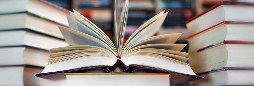Livres manuscrits